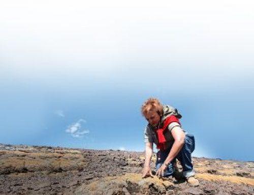 La alta montaña de la zona central también acusa los efectos de la megasequía