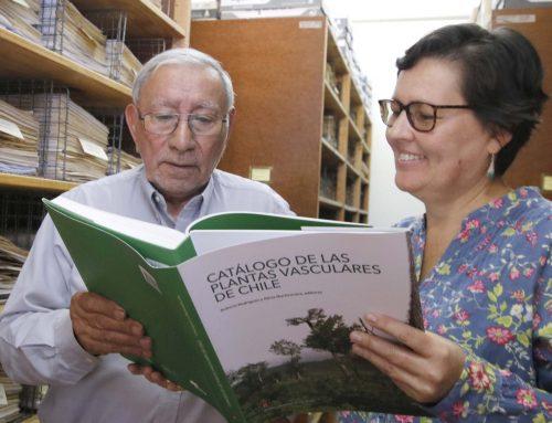Publican catálogo actualizado de plantas vasculares de Chile